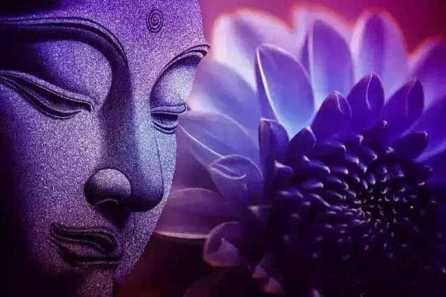 爱是我们三维空间能感受到的最大的宇宙能量《开启你的高维智慧》6