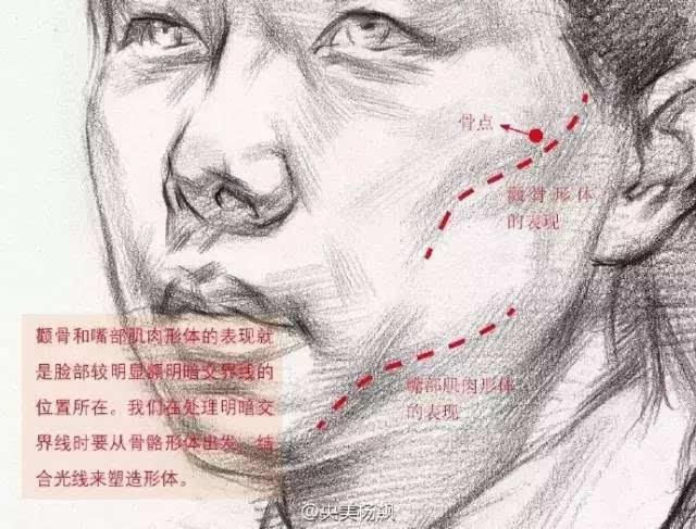 【干货】素描头像的面部结构与头发的表达你会吗?