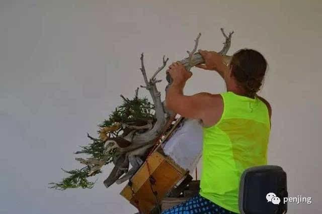 铜丝树手工制作图解
