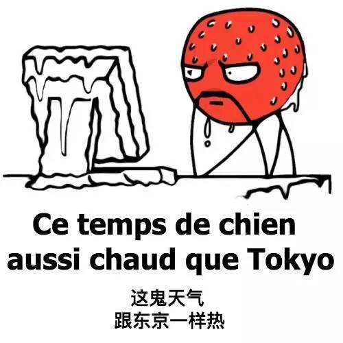 哈哈哈~(≥▽≤)/~ 你爱我吗? 不好意思,我只爱法语!图片