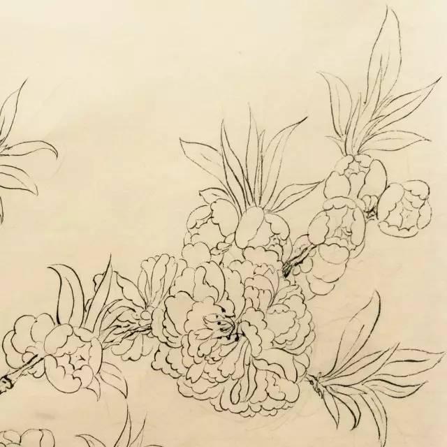 数学背景图片黑白手绘