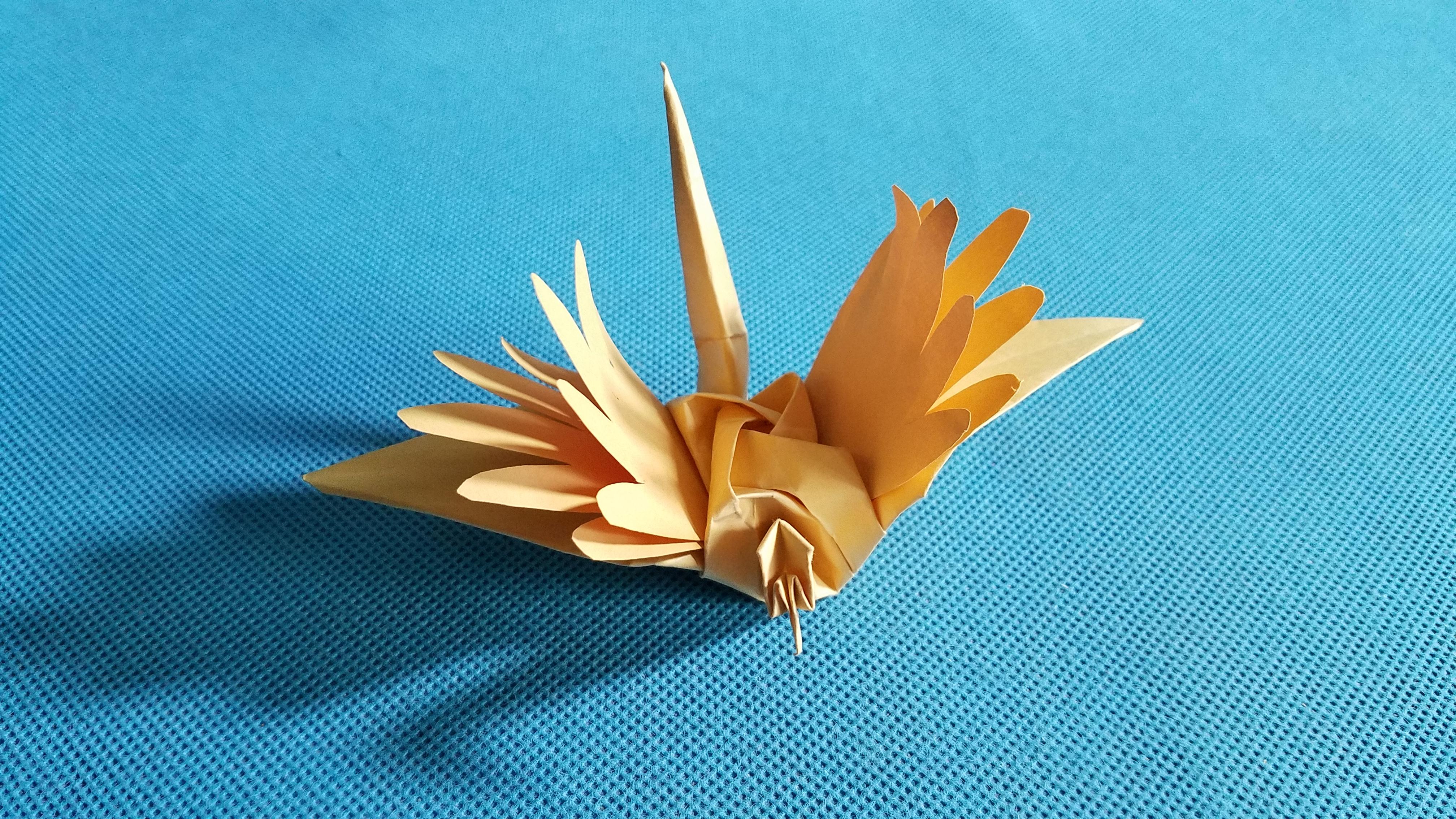 折纸择天记寻风鹤的折法 玫瑰寻风鹤怎么折