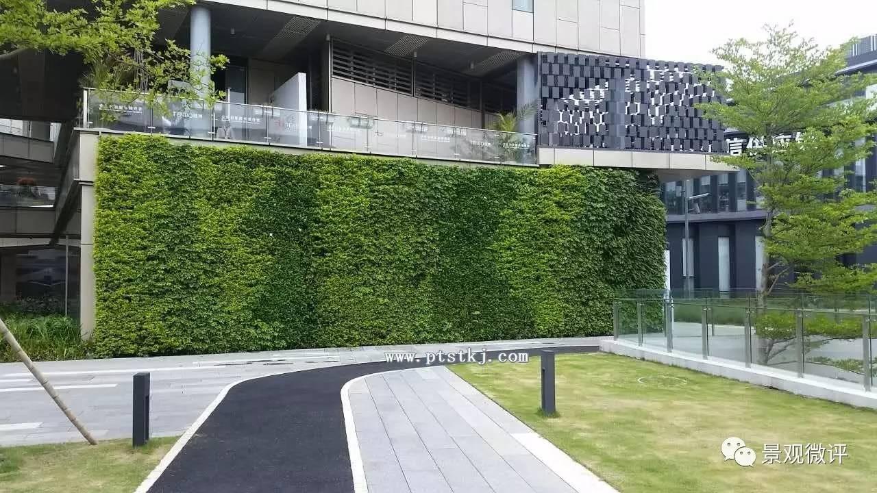 屋顶花园,景观石材,分析图,排版,施工图,新中式,植物,彩平,方案设计