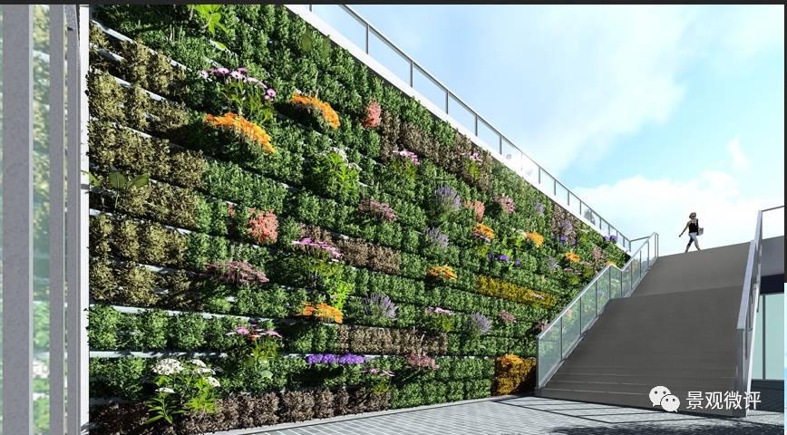 花墙 景观 平面图 墙 植物 868_480