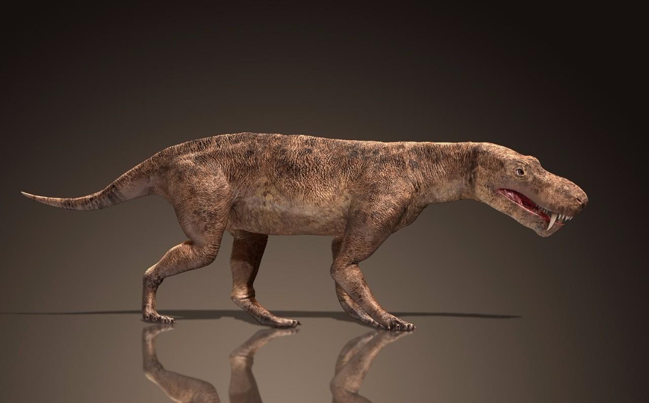 动物 恐龙 1280_796