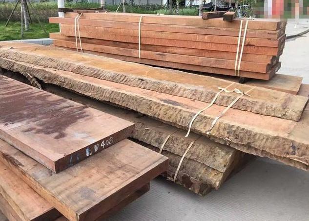 百年老木轰然倒地,拖回切成实木大板惹来众人围观