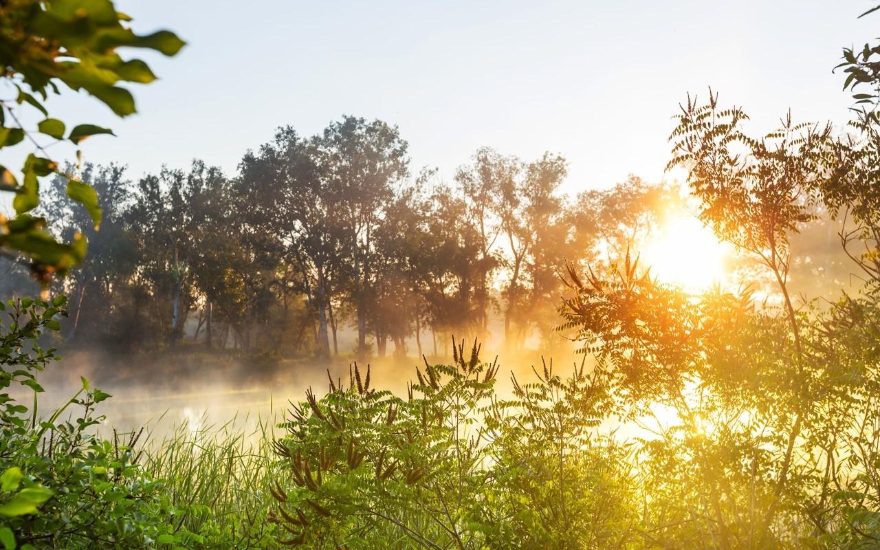 钢琴曲 新的一天 ,给你最美妙的清晨