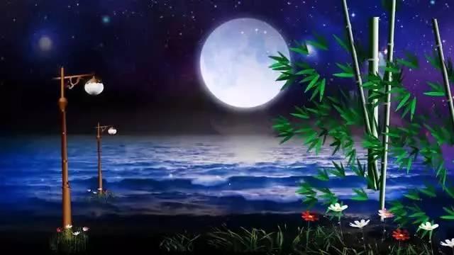 葫芦丝版 月光下的凤尾竹
