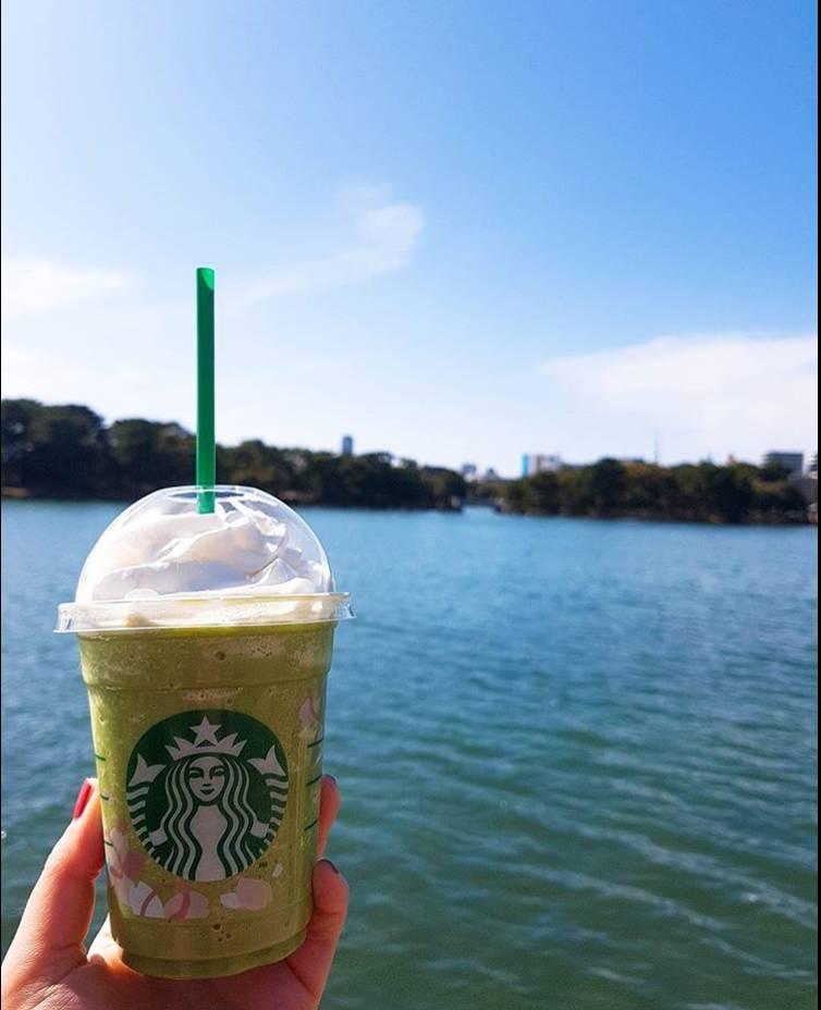 柳岛,松岛,菖蒲岛通过四座小桥连接,星系般散布于宽阔的湖泊,湖光水色