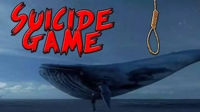 震惊 探因蓝鲸死亡游戏的流行背后