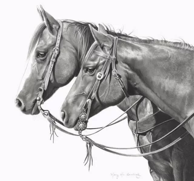 写实素描动物马