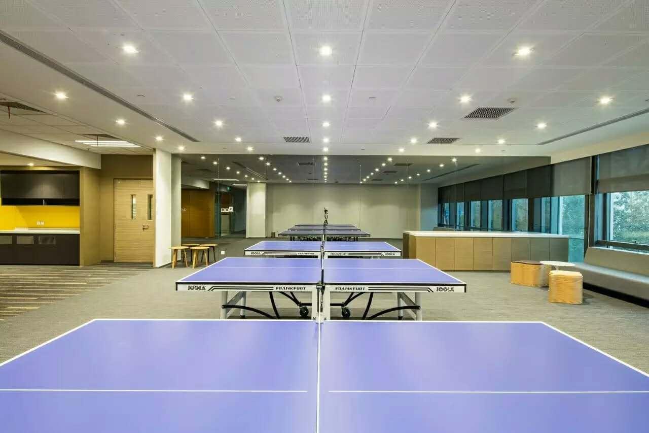 金城案例—中国惠普总部乒乓球室