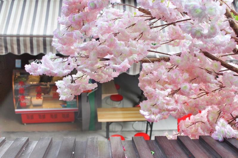 折花大全步骤图解樱花