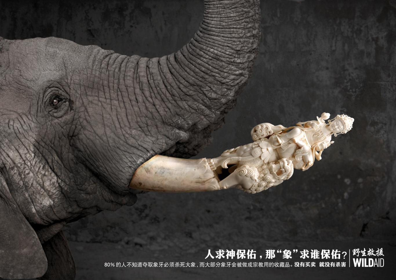 拒绝象牙手绘海报英文