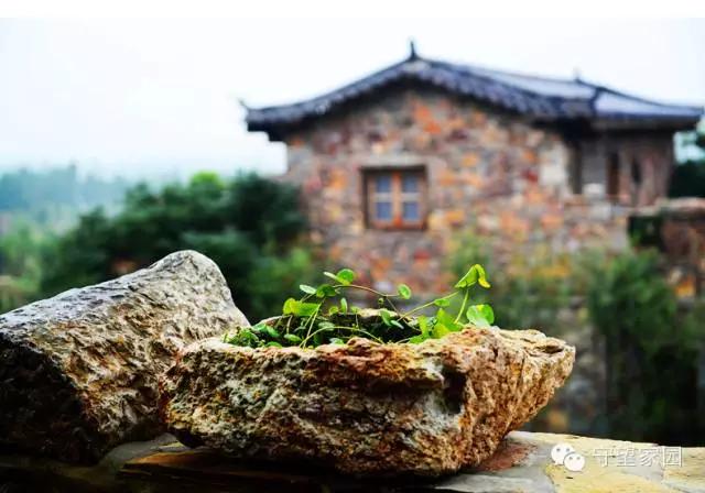 雄壮红 戏马台   徐州贾汪紫海蓝山薰衣草创意庄园是淮海