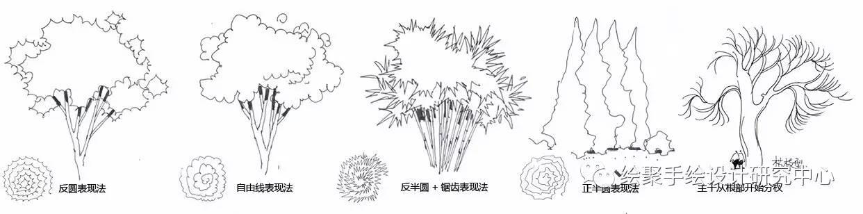 鸟瞰单体植物手绘素材