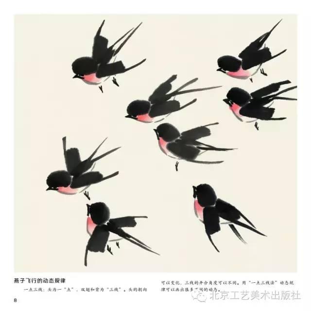 【国画教程】入门,樱桃,燕子