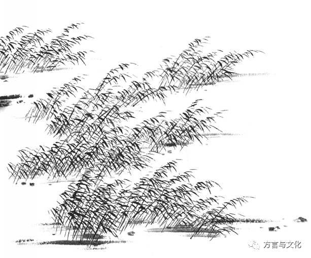 简笔画 手绘 线稿 613_508