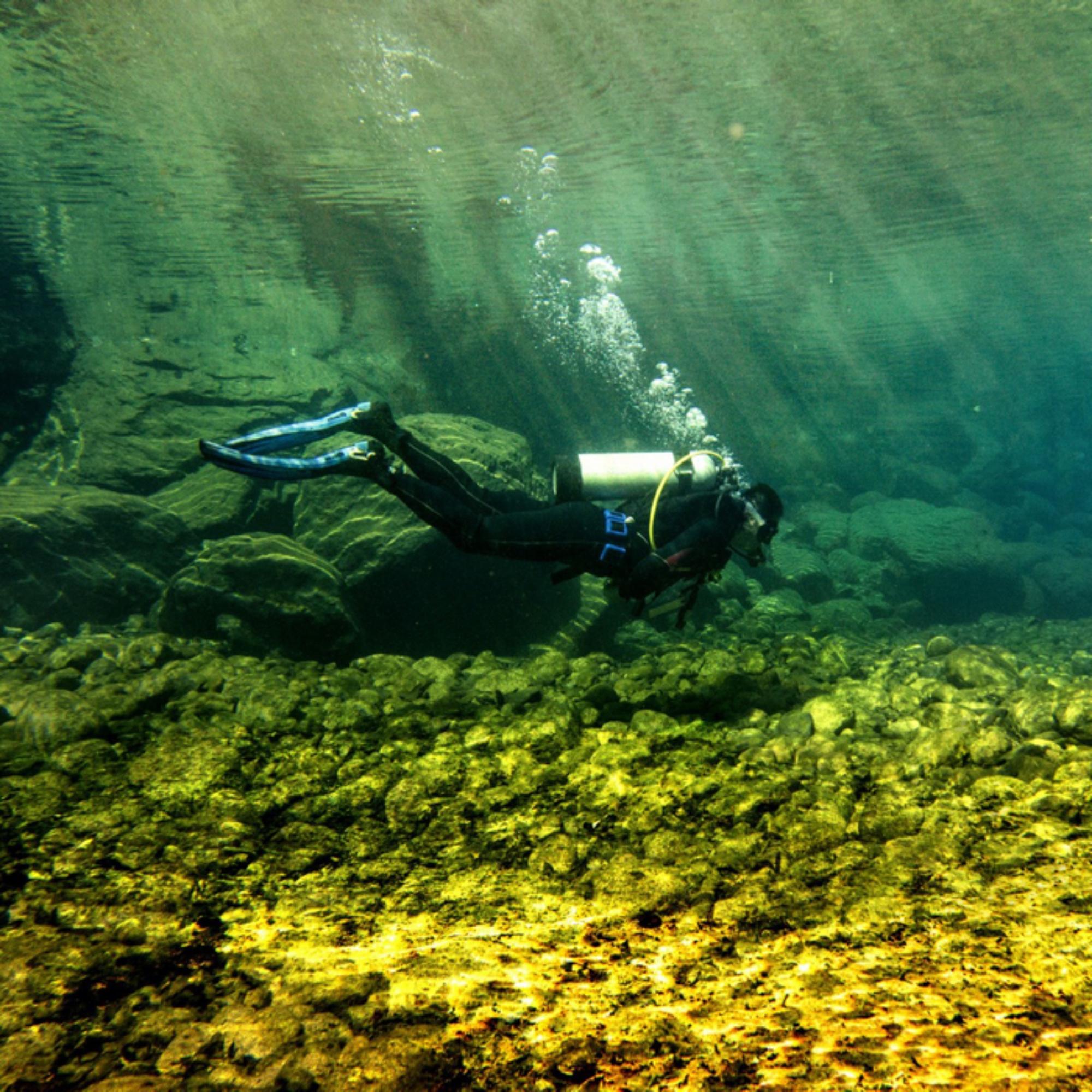 在为数不多的大峡谷森林潜水是一种怎样的体验