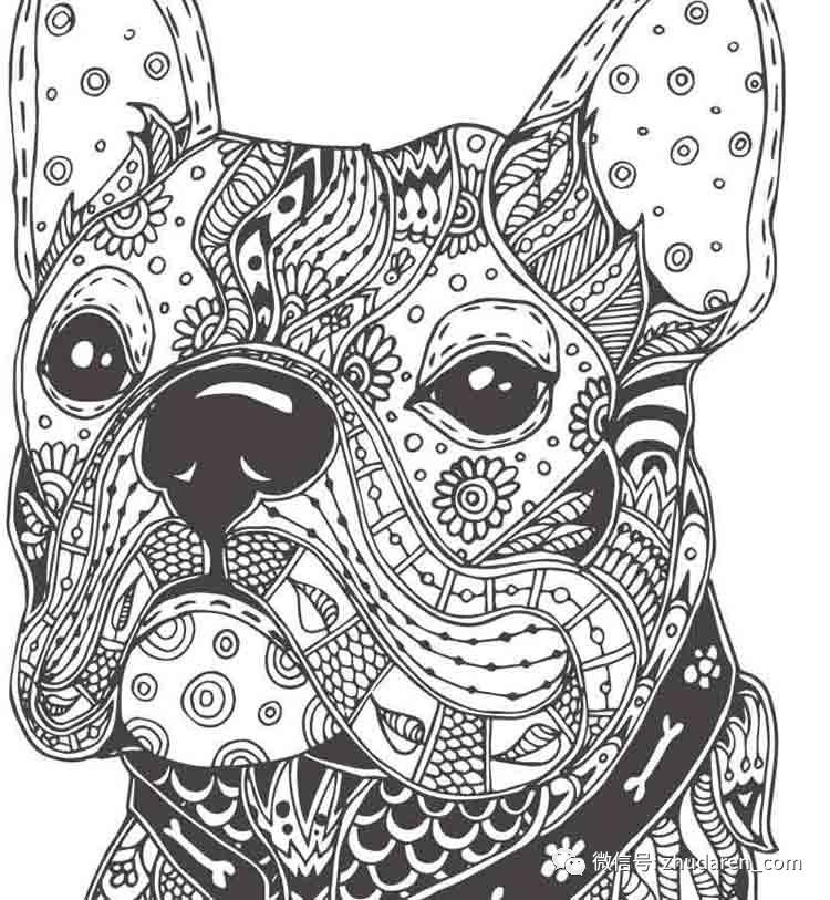 黑白装饰画动物素材图片
