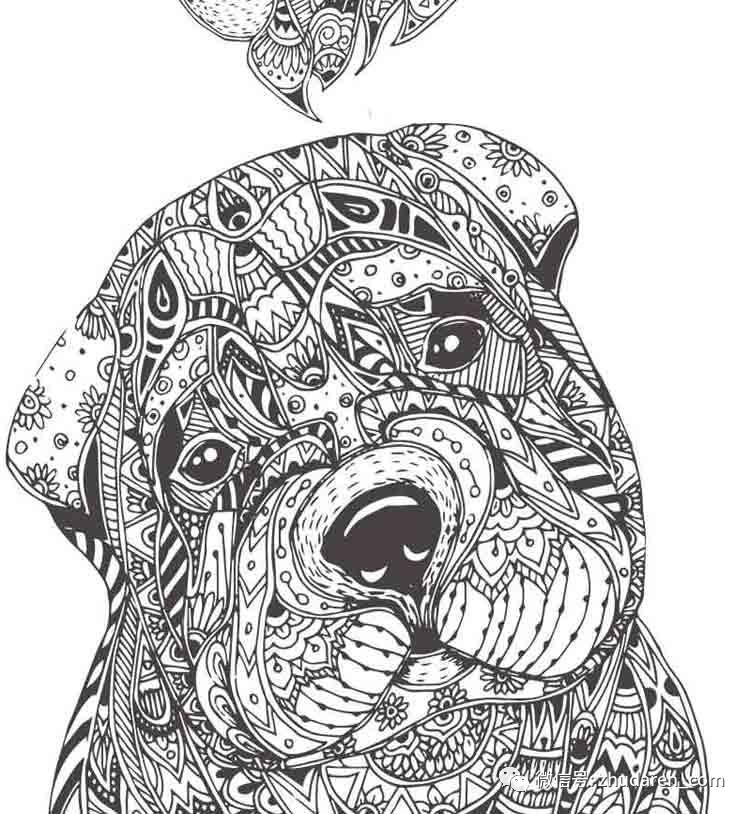 猪黑白创意手绘
