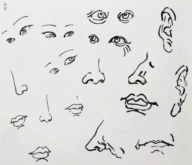 眼睛嘴耳朵黑白手绘