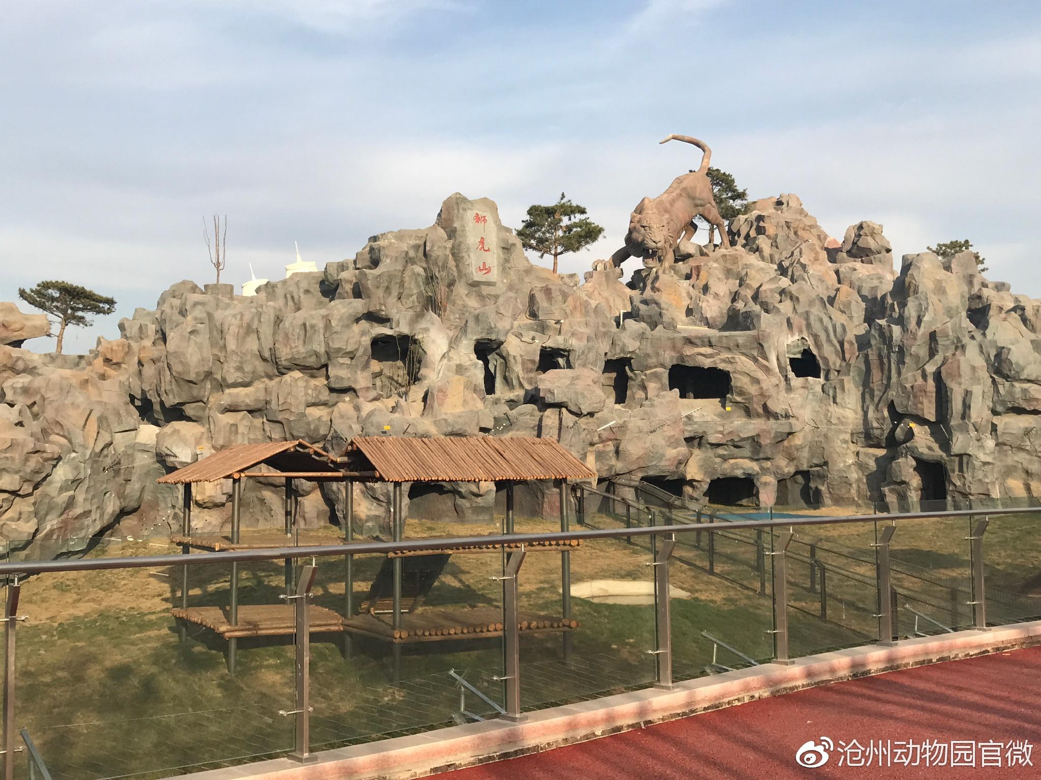 沧州动物园游乐场价格【通知】网传动物园票价60元为不实消息,我园暂