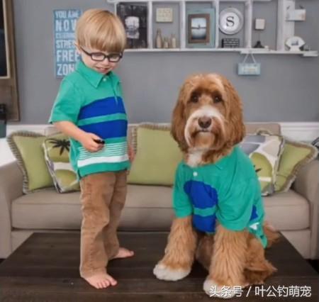 狗狗和小孩穿一样的衣服,好温馨,满满的爱