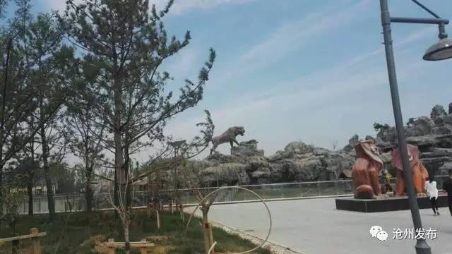 沧州动物园游乐设施价格表!你怎么看