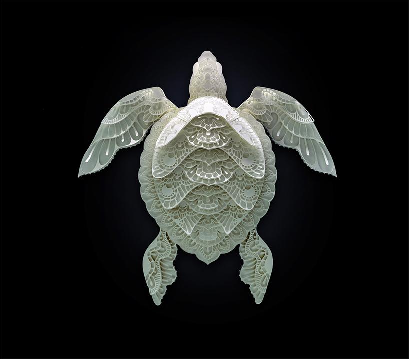 令人叹为观止的濒危动物剪纸艺术
