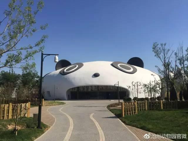 来源:沧州动物园官微