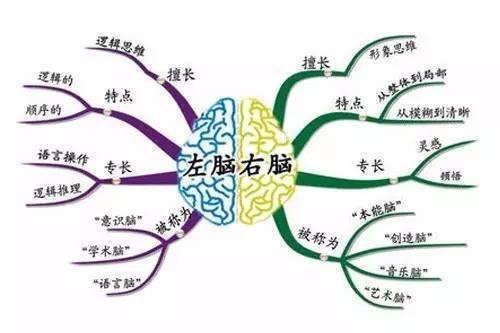 如何利用【无所不能】思维导图,高效提高学习力【干货图片