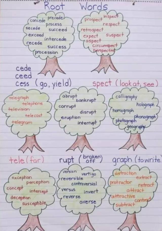美国教室里比思维导图还火的锚图,帮孩子秒懂各科知识