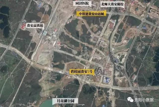 贵安同济医院平面图