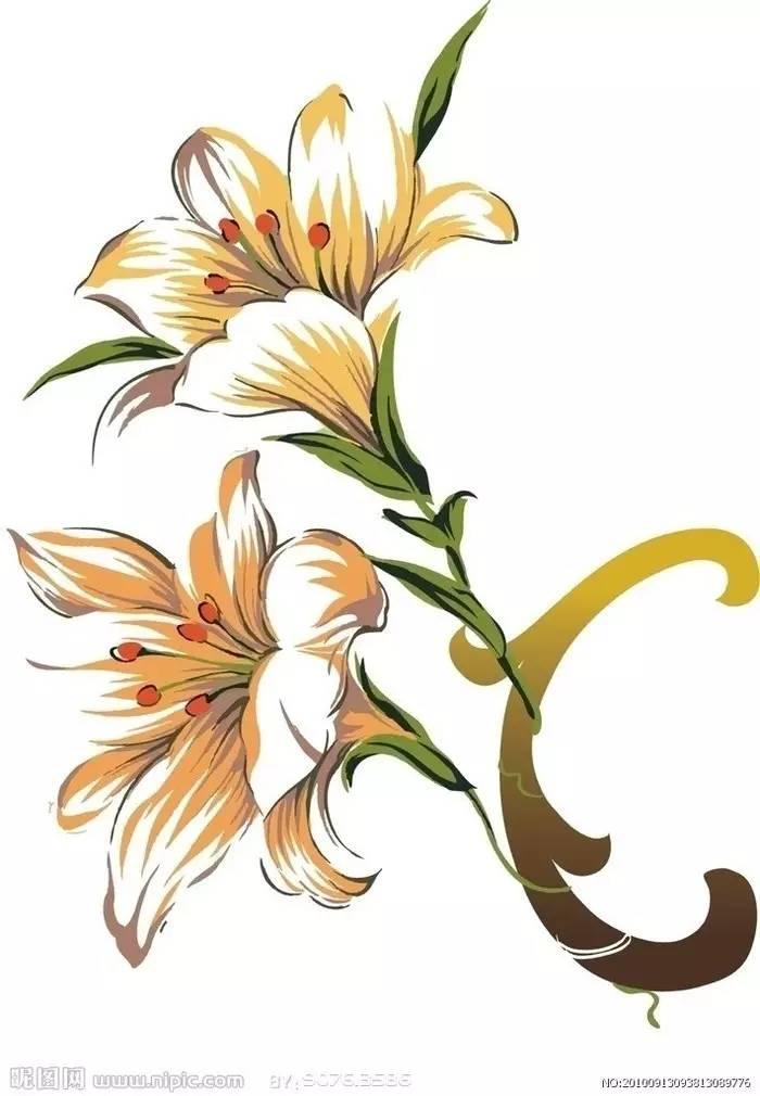 5.向日葵花   ——