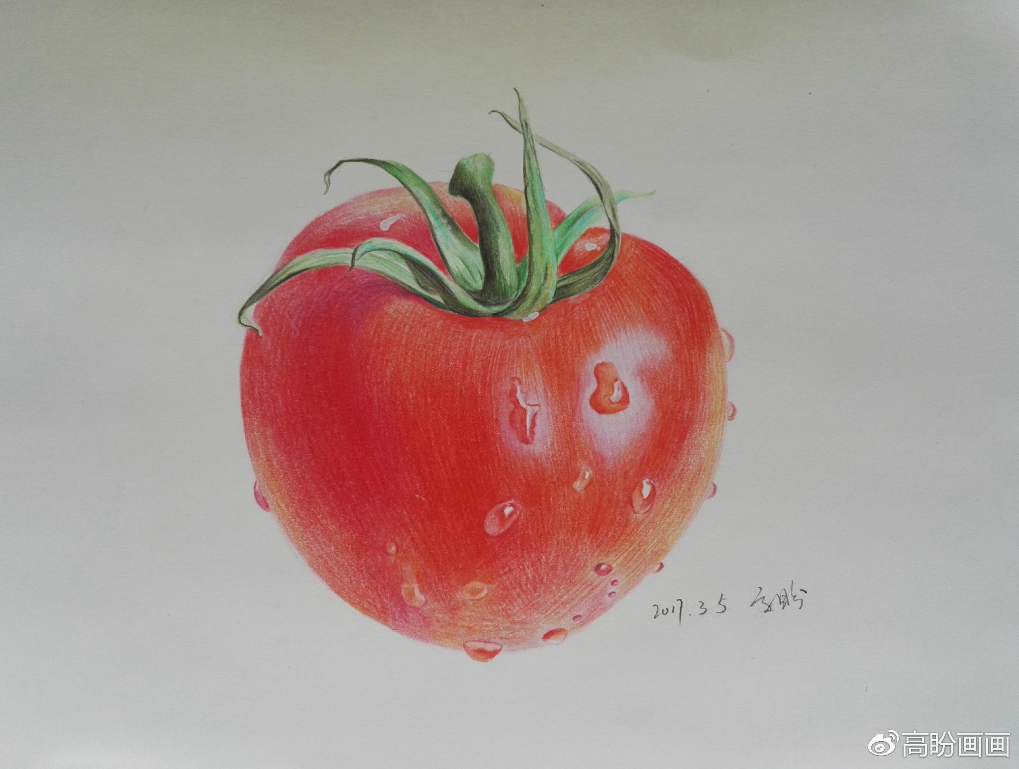 彩铅教程   画个西红柿(高盼)