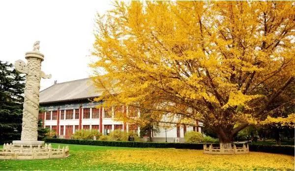 北京大学暑期国际学习项目欢迎您