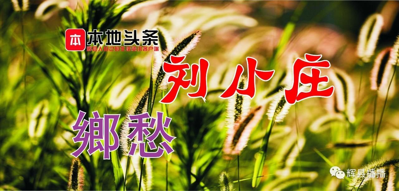 胡桥乡刘小庄的故事…