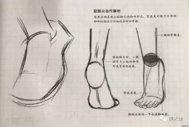 注意鞋子轮廓的转折欺负要符合脚部骨骼结构.-素描教程 脚部的画法图片