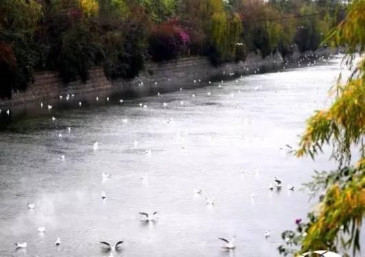 壁纸 风景 山水 摄影 桌面 531_374