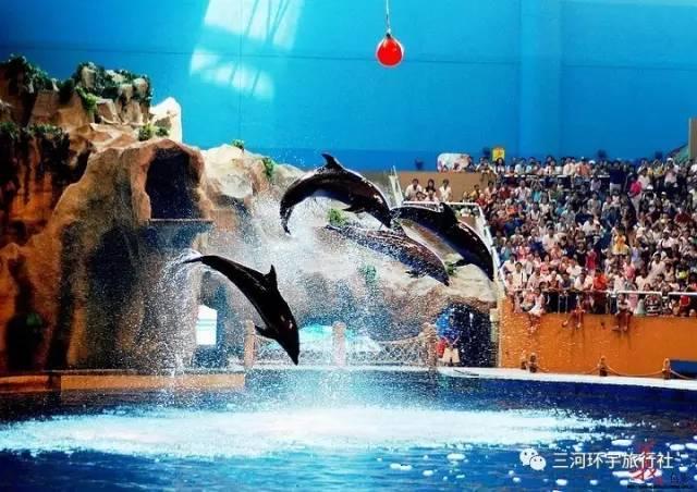 【旅游】北京动物园、海洋馆,世界公园,古北水镇白天+夜景,桃源仙谷一日游