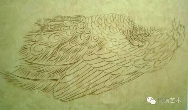 工笔孔雀画法详解图片