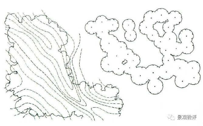 景观手绘树木线稿顶视图