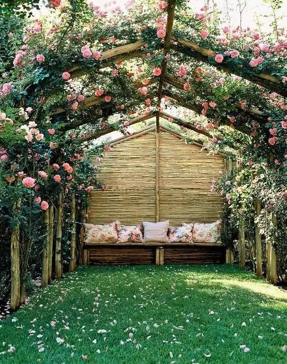 蔷薇怎么搭架子