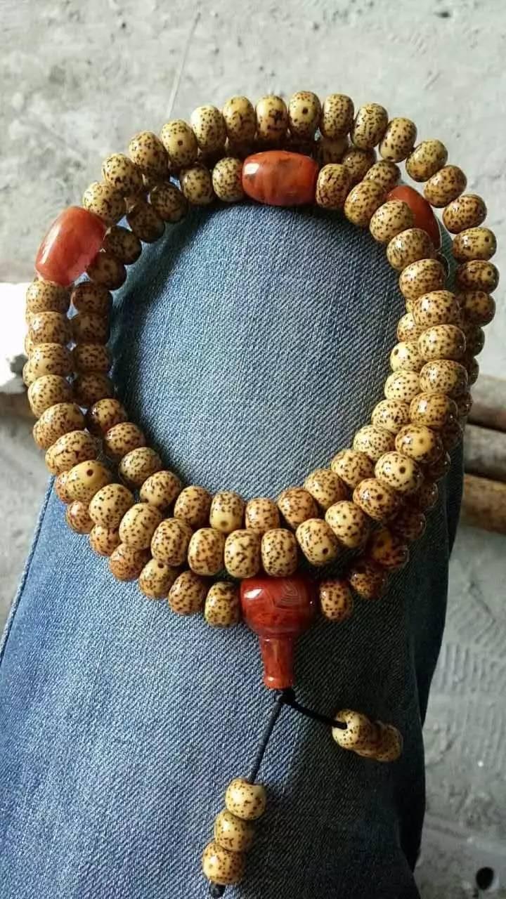 金丝指葫芦价格-最新金丝指葫芦价格、批发报价、... - 阿里巴巴