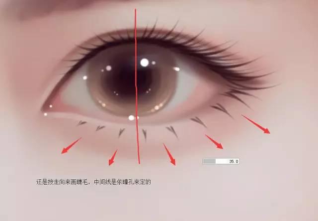 photoshop绘制人像转手绘中的漂亮的眼睛
