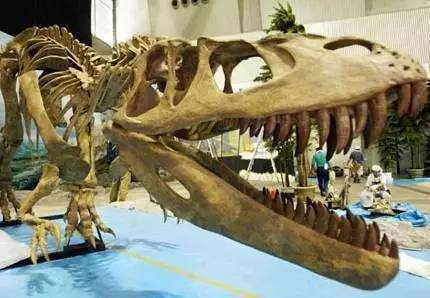 现代高科技手段,制作仿真机器恐龙 不仅是模型,还有原声放映 再现