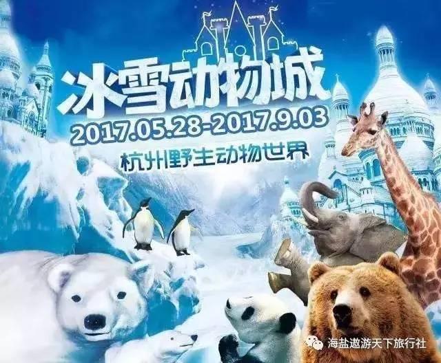 『迎六一』冰雪动物城—杭州野生动物园欢乐亲子一日游