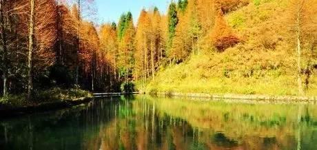 甘肃召开生态整改及国家公园建设工作联席会议