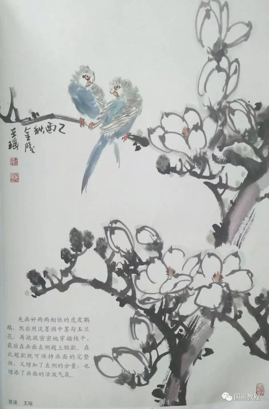 【国画教程】3集,禽鸟的步骤画法